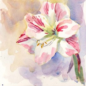 Flower_180325a