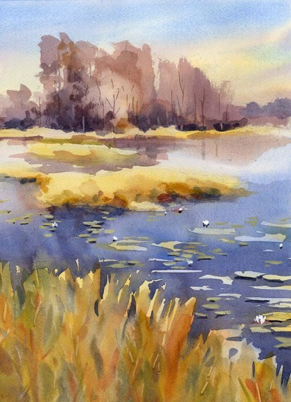 GrassyWaters_190210a